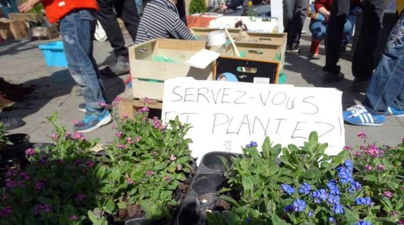 Servez-vous et plantez, Ecologie Debout – DR