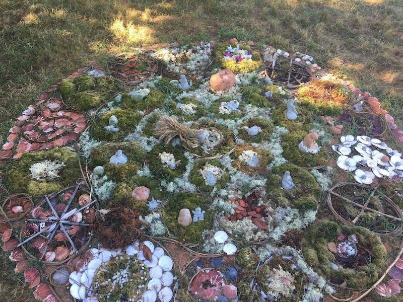 Les cercles laissés par les druides dans la forêt de Brocéliande lors du rassemblement inter Nuits-Debout.