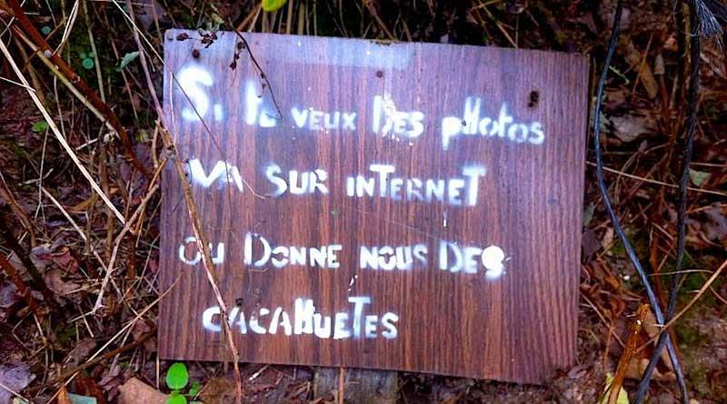 """""""Si tu veux des photos va sur internet ou donne-nous des cacahuètes""""."""