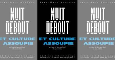 Livre : Nuit Debout et culture assoupie