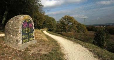 Le Bois de Bernouille : histoire d'une lutte réussie dans les années 90